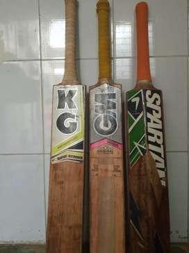 Old Good condition Season cricket bat.