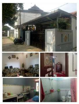 Hunian rumah kampung lingkungan asri
