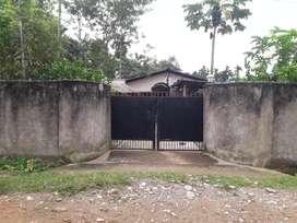 1 kottah 5 lesa miyadi land with a assam type