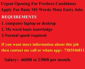 Offline Data Entry Operator requirement now.