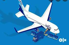Airport job apply and grab job  Nearest Airport