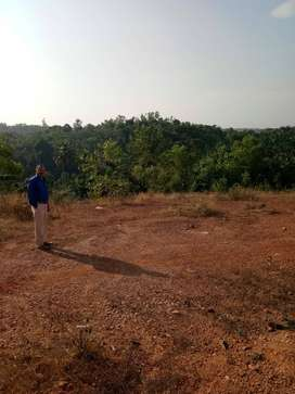 95 Cents Residential plot for sale near Uppinangadi