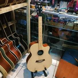 Gitar update taylor