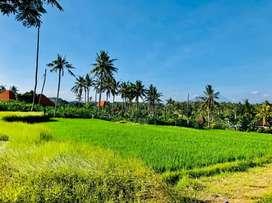 Land For Sale, Located at Tegenungan & Sumampan Waterfall