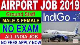 Airlines Recruiting Ground Staff for Airport Job- Male/Female, Fresher