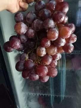 Obral anggur merah 35k 1kg