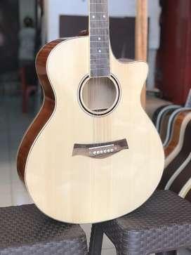 Akustik gitar custom