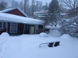Last chance to Enjoy snowfall in murree in seperate guest house.