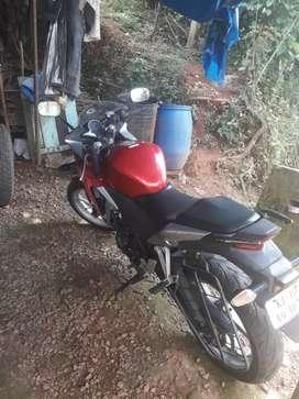 Cbr 250 for sale