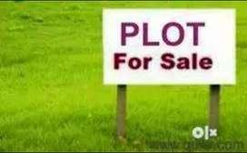 Sunny enclave 145 yard plot kharar sector 125 mohali