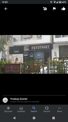 Pet Shop Store Manager in Indirapuram/Noida