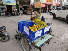 Di cari karyawan jualan jeruk gajian harian
