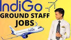 URGENT HIRING FOR AIRLINES JOBS INDIGO Airline Company An Amazing Plac