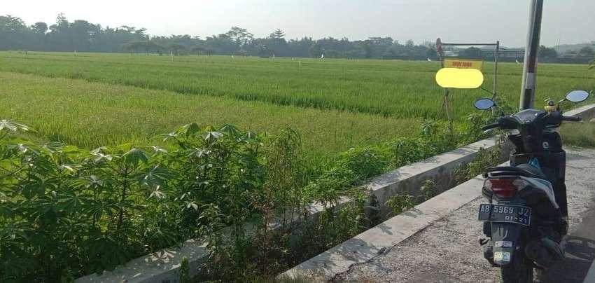 Tanah Luas Cocok Dibangun Gudang Karena Akses Kontainer Masuk. SF4379