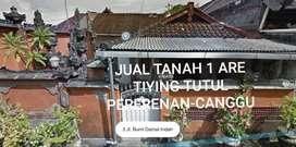 Tanah tiying tutul 1 are