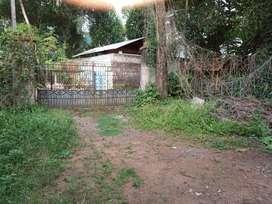 24.5 Cent house plot in Koonamthanam, Changanacherry