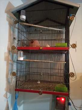Birds double story cage
