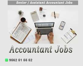 Accountants- Senior / Assistant
