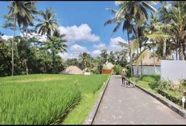 Beautiful Villa Complex in Ubud for Yearly Lease