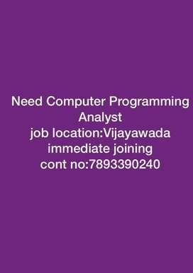 Computer programming analyst
