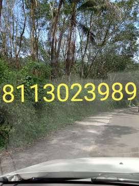 50 CENT PWD ROAD  FRONTAGE HOUSE PLOT SALE IN PALA TOWN 3 KM