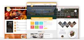 WordPress Pro Themes Available Pkr 1000 Each