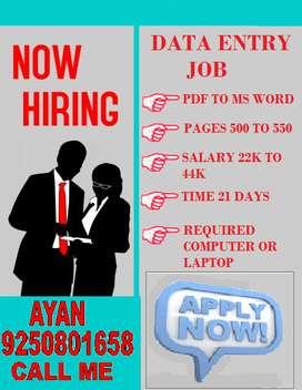 Data entry Online/Offline jobs home based computer work in MS.Word