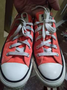 Converse All Star Unisex Size.36¹/²