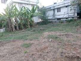Residential plot near Little Flower hospital , Angamaly