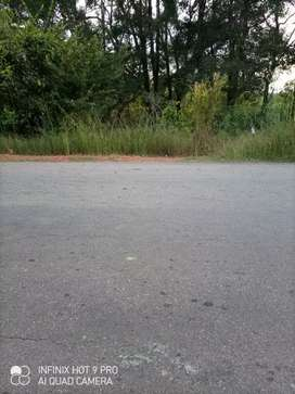 60 cents road side level land available for sale at Shirva-Belman road