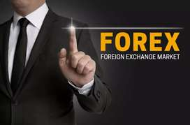 Basic Forex Trading course