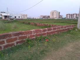 Gharabadi yellowzone plot for sale at Palasuni