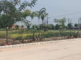 Covered Campus Plot For sale behind VY Hospital