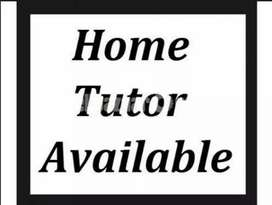 An experienced home tutor available for matric and pre medical student