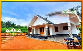 New Home and 10 cent near Thodupuzha Vazhakkulam