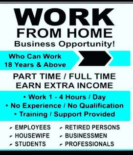 Online work for freshers