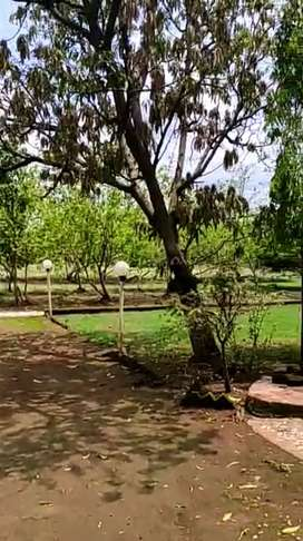 14kms from MURBAD BUS DEPOT-7.5ACER AGRICULTURE FARM PLOT- 2BHK HOUSE