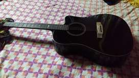 Mantic AG 10SC Acoustic Guitar In Mint Condition