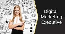 Job Opening for Digital Marketing Executive
