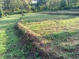 tanah sawah kebun tegal