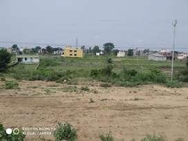 East facing 155 gagh plot in raiwala