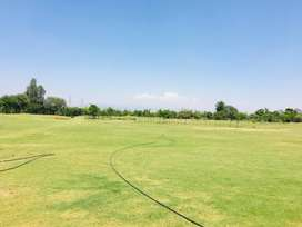 ATS plots with modern development in project near airport chandigarh