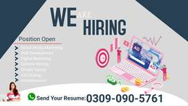 content writing homebased job for male | female