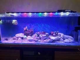 Lampu aquarium hpl diy