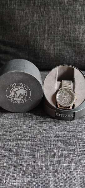 Ctizen Ecodrive Chronograph