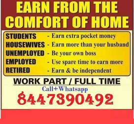 In the starting you will get higher income. After that will receive ca