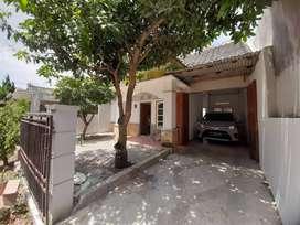 Dijual CEPAT RUMAH MURAH dan Strategis di Simpang Amarylis Kota Batu