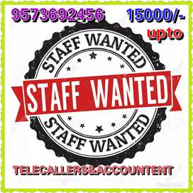 Need Telecaller and accountent female