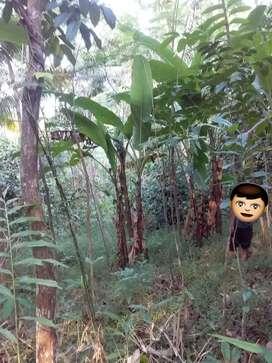 Tanah Investasi Luas 1400 m2 di Tamansari Barat Purwokerto