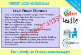 Non stop earning in part time job data typing work